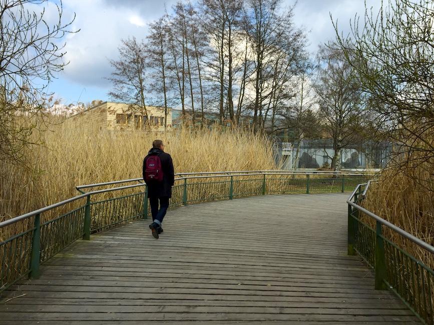 Берлинский зоопарк –это еще один очень красивый парк в центре