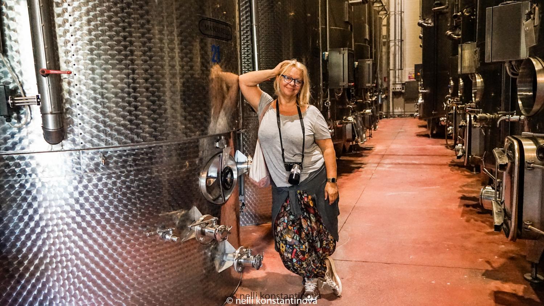 Абруццо: винодельня Masciarelli