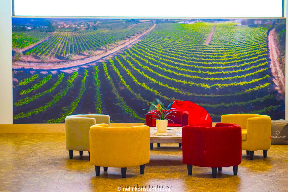 Португалия, по винодельням-5: что пить в Lusovini