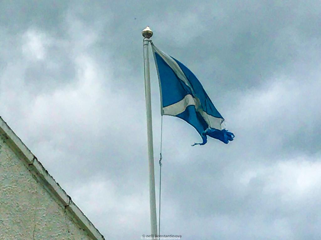 Местный флаг