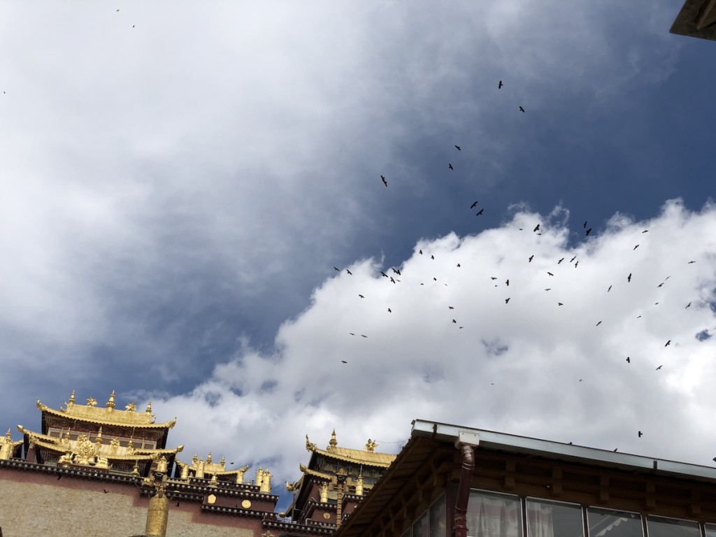 Над монастырем кружили стаи священных птиц, черных воронов.