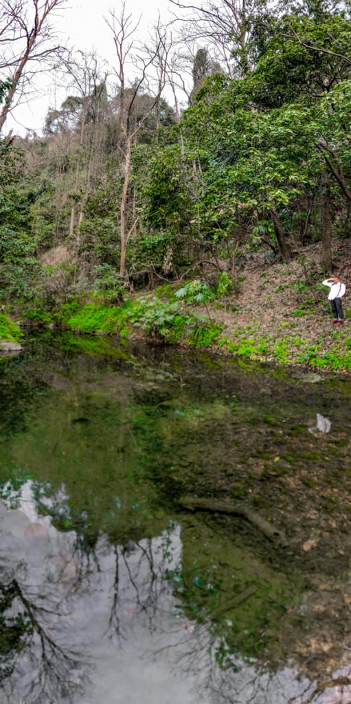 Ручей почти становится рекой