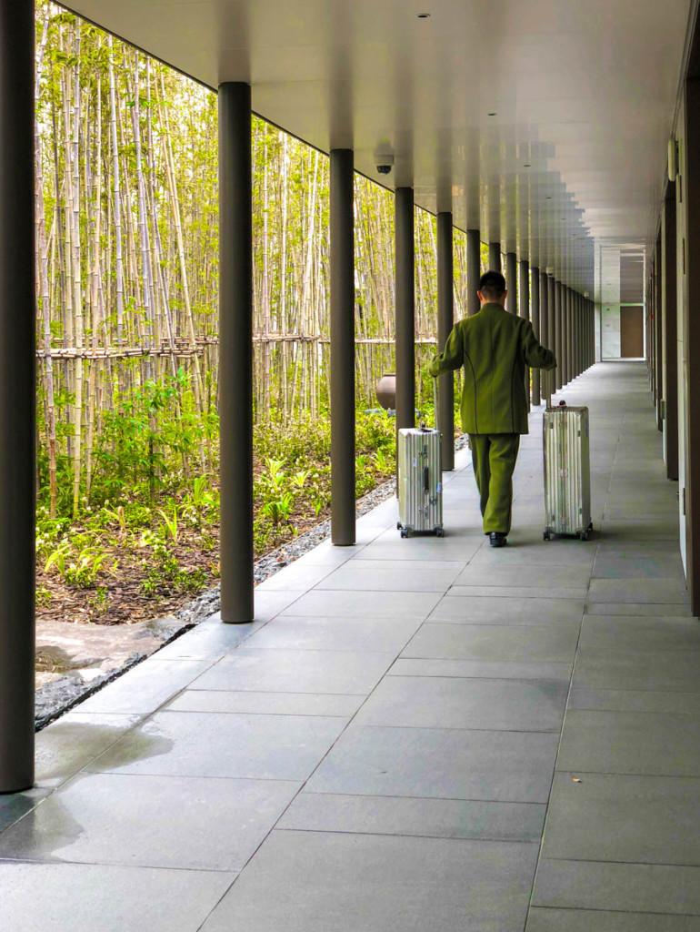 Внутренний двор с бамбуковой рощей