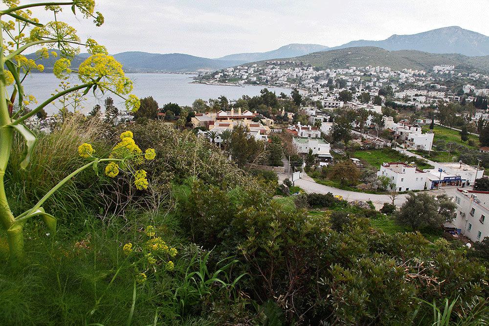 Цвета домов на всем полуострове должны быть только белыми или цвета природного камня – таков закон