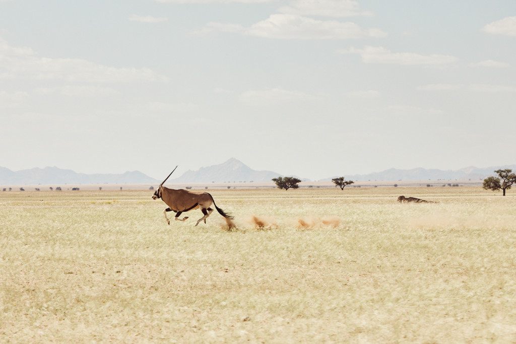 MAD_00105_2018_PTE_Namibia_03369-11