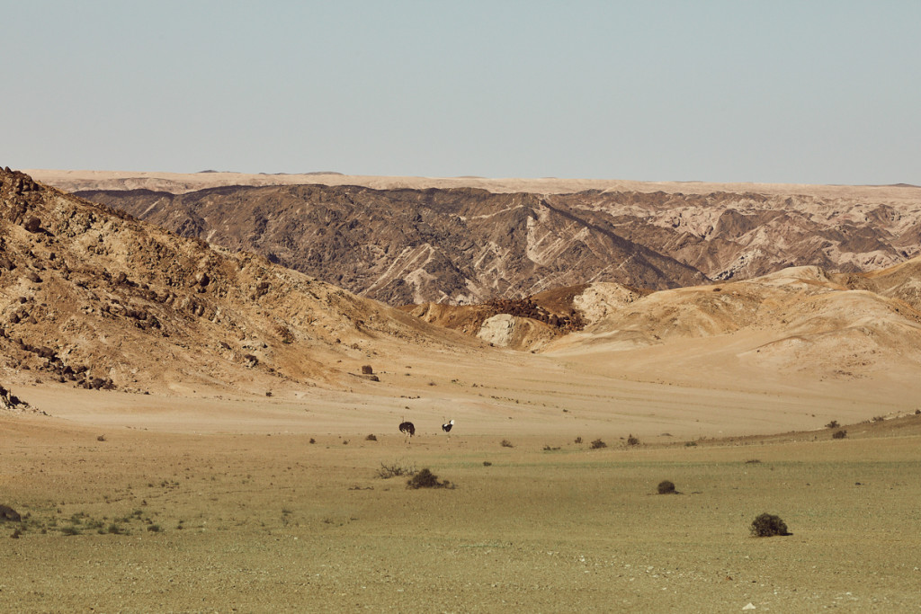 MAD_00105_2018_PTE_Namibia_05481-12