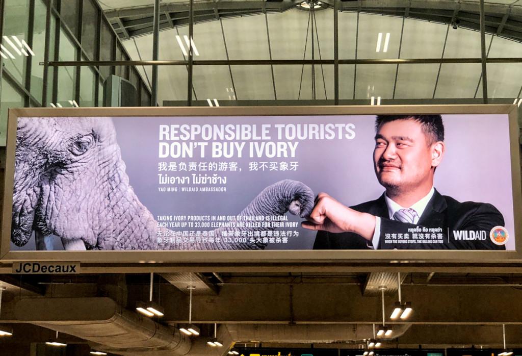 Сознательный турист не покупает слоновую кость