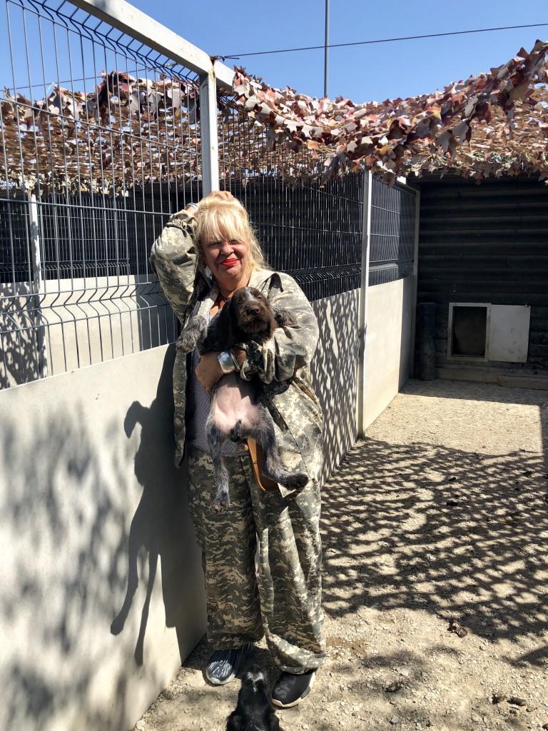 Щенки курцхааров –зашкаливающее мимими