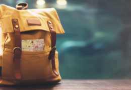 Travelinsider image